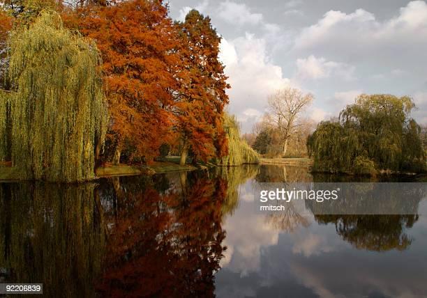 Autumn color play