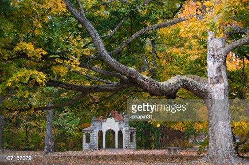 インディアナ大学の秋の色