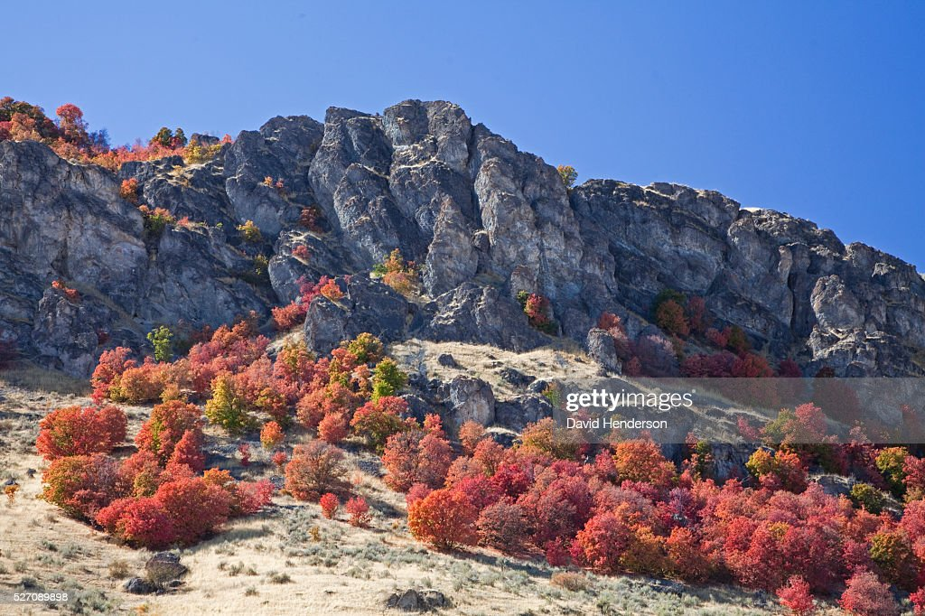 Autumn colors on rocky hillside, Pocatello, Idaho, USA : Stock Photo