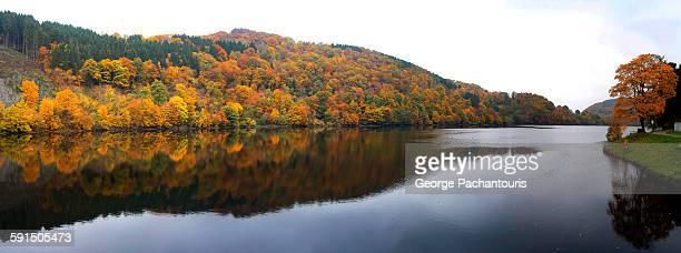 Autumn colors panorama