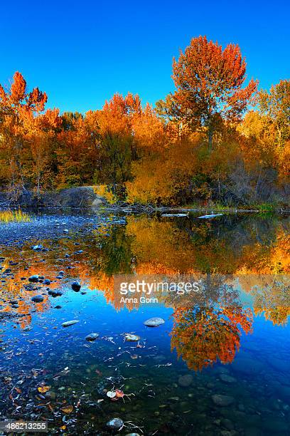 Autumn colors reflected in lake in Boise