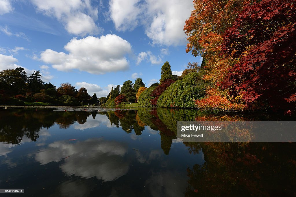 Autumn colours are on full display at Sheffield Park Garden on October 16, 2012 in Uckfield, England. The East Sussex landscape gardens were created by 'Capability' Brown in the 18th century around a centrepiece of four lakes.