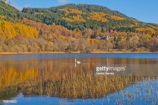 Autumn colours in the Trossachs, Scotland