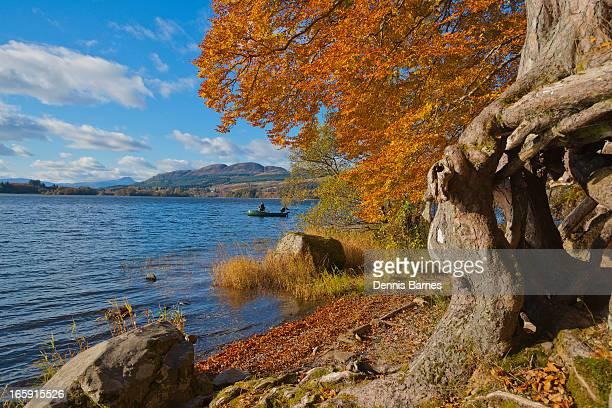 Autumn colours, Lake of Menteith