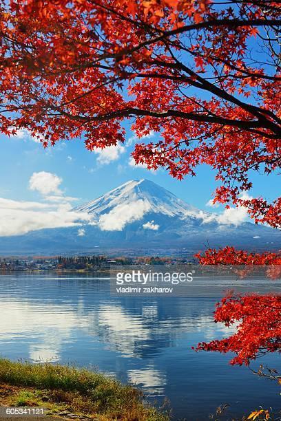 Autumn colours of Japan