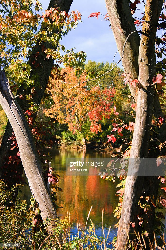 Autumn day at the river