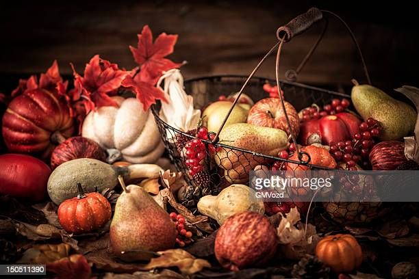 Autumn Decoration Background with Leafs