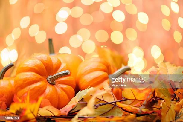 Décor de l'automne
