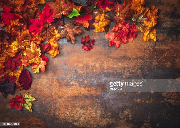 Autumn Decoration with Leafs on Rustic Background