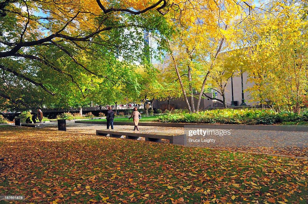 Autumn Descends on Chicago