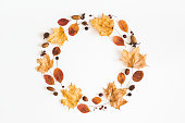 Autumn composition. Wreath made of autumn dried leaves, berries, acorns on white background. Flat lay, top view, copy space