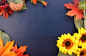 Bright colorful Autumn Fall Thanksgiving Halloween Background with decorated borders of sunflowers and fall leaves and dark blue distressed wood background.