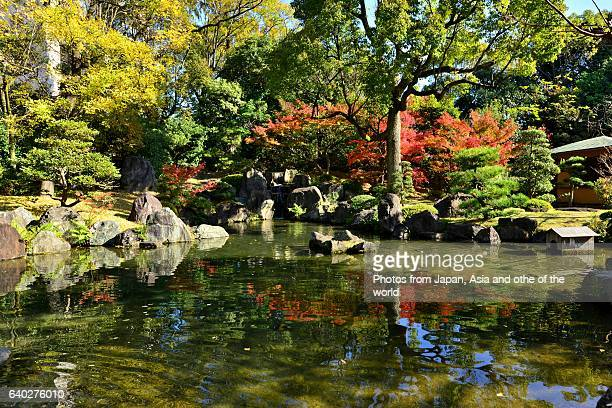 Autumn Foliage at Shitenno-ji Temple, Osaka, Japan