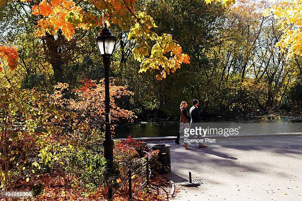 Autumn foliage fills the trees of Prospect Park on October 30 2015 in the Brooklyn borough of New York City Throughout the Northeast trees are...