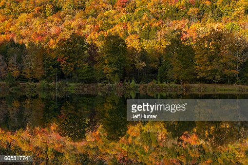 Autumn foliage reflected in river, New England