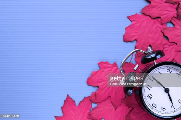 Autumn frame with falling red maple leaves and alarm clock on blue background. Design with text space. Subject captured against soft window lighting.
