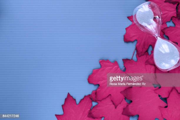 Autumn frame with falling red maple leaves and hourglasses on blue background. Design with text space. Subject captured against soft window lighting.