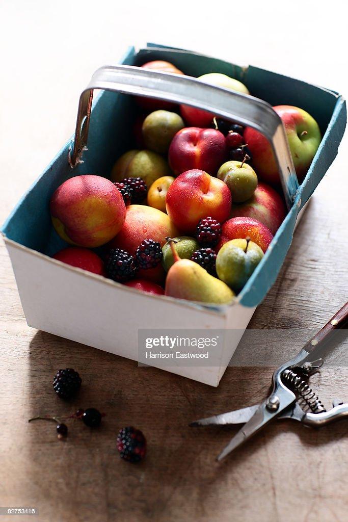 Autumn fruits in punnet on kitchen table : Stock Photo