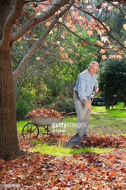 Autumn Gardener Raking Leaves