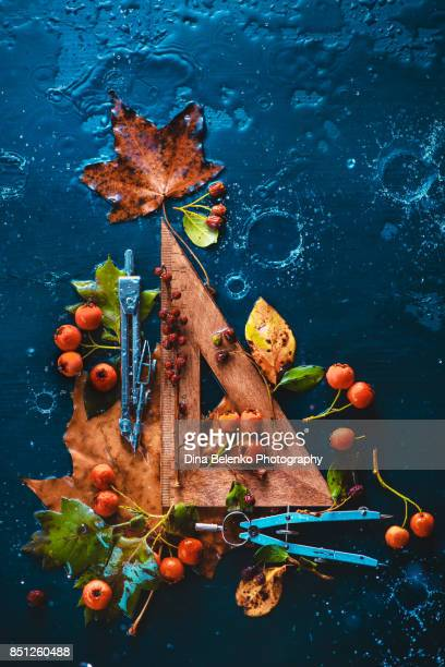 Autumn geometry. Wooden triangular ruler with compasses, autumn leaves and berries on a dark wet background with water drops. Still life with school supplies.