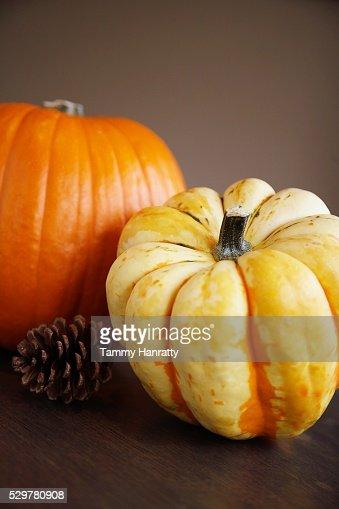 Autumn Gourds : Stockfoto