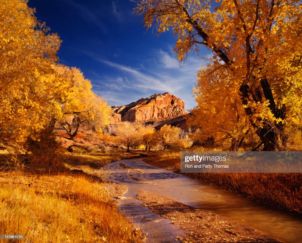 Autumn In Capital Reef National Park : Stock Photo