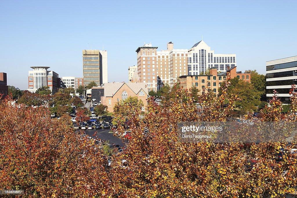 Autumn in Greenville