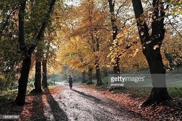 Autumn in Hampstead