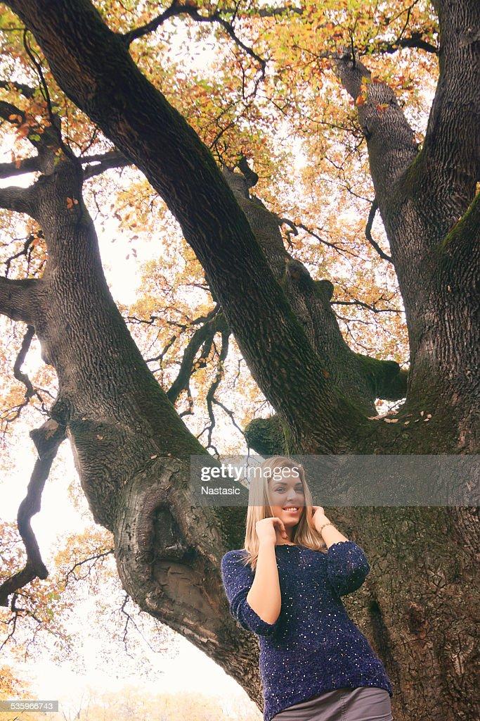 Autumn in park : Stock Photo