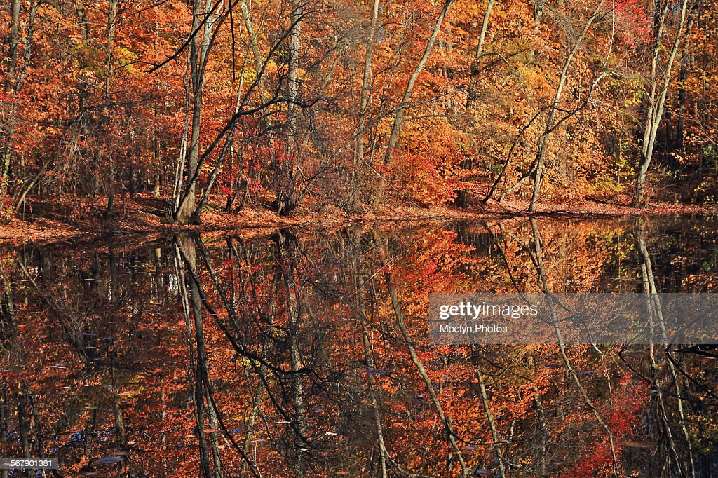 Autumn in Rockland County