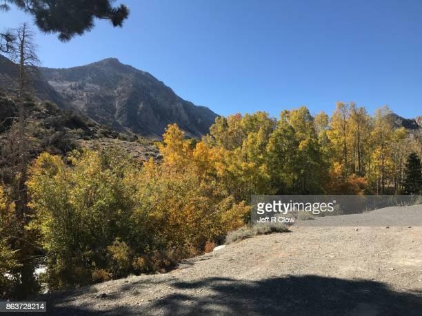 Autumn in the Sierra Mountains 4