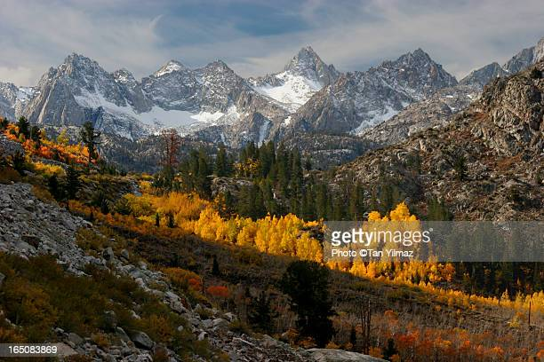 Autumn in the Sierra Nevada