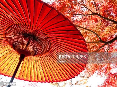 Autumn Japanese Umbrella