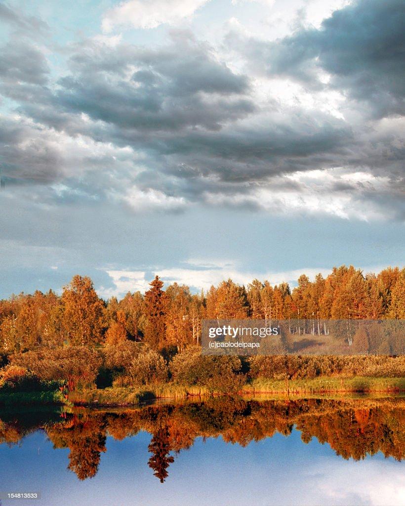 autumn lake : Stock Photo