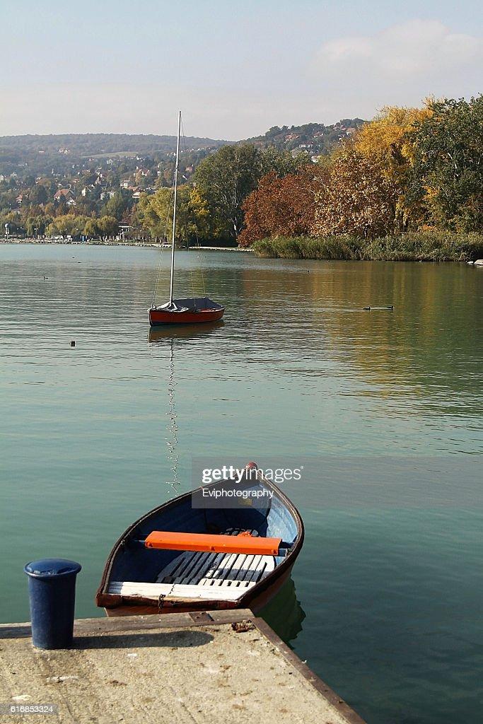 Autumn landscape, Balatonalmadi, Hungary : Stock Photo