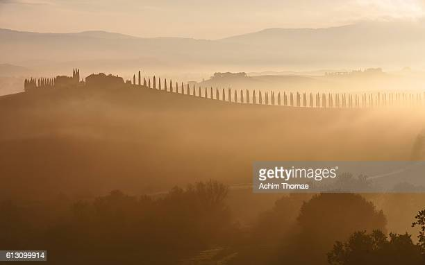Autumn landscape, Val d'Orcia, Tuscany, Italy, Europe