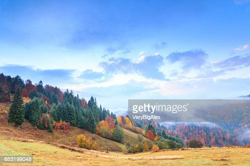 Autumn landscape with fog in the mountains. Fir forest on the hills. Carpathians, Ukraine, Europe : Stockfoto