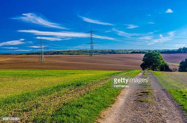 autumn landscape with power poles