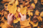 autumn leave in little boy´s hand, selective focus