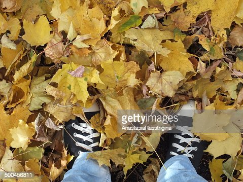 autumn leaves and feet : Stock Photo
