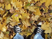 autumn leaves and feet