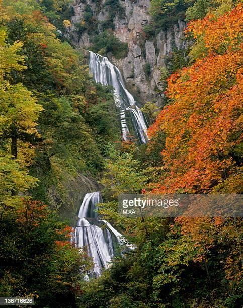 Autumn Leaves and Hagoromo Waterfall, Higashikawa, Hokkaido, Japan