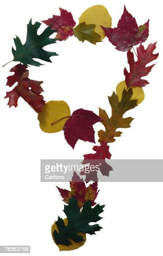 Autumn leaves as the number nine