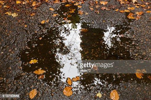 Hojas de otoño en un charco : Foto de stock