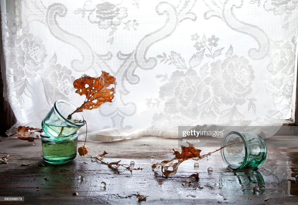 autumn leaves in broken glass vase stock photo - Broken Glass Vase