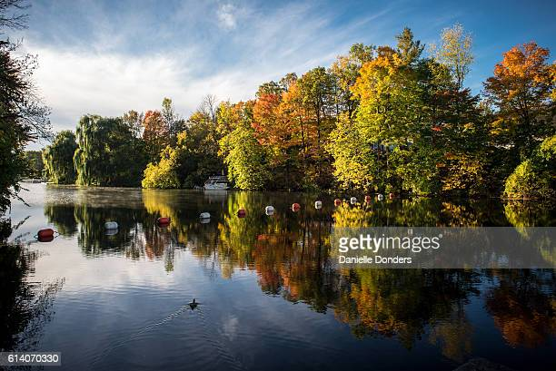 Autumn leaves reflected in the Rideau River