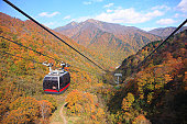 Autumn leaves Seen from Tanigawa-dake cable car