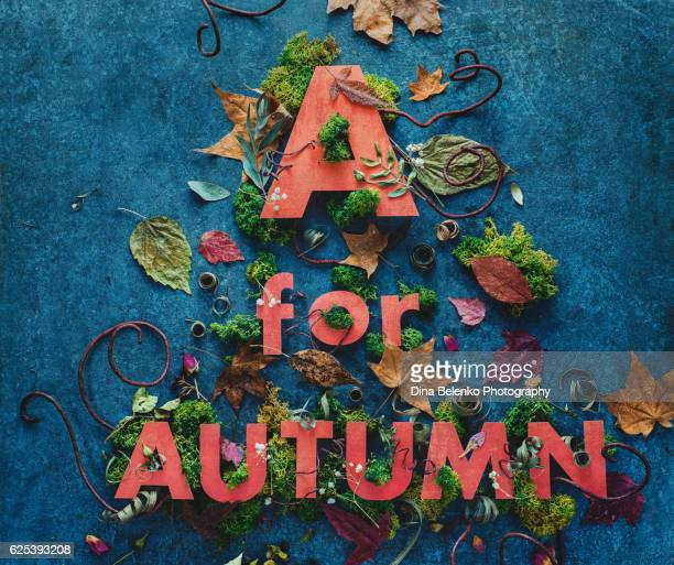 Autumn lettering with moss and leaves