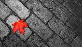 Autumn maple leaf and brick background.