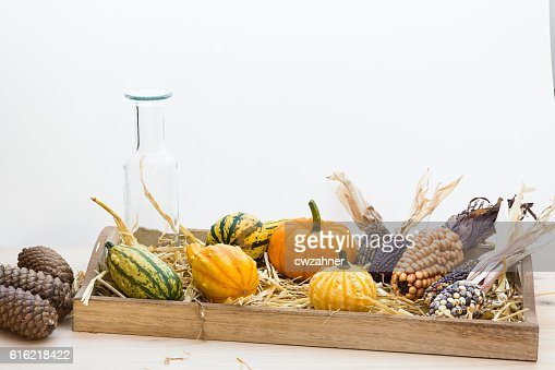 Autumn mood with decorative pumpkins : Stockfoto